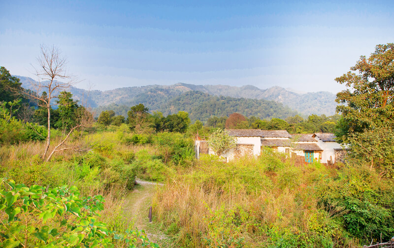 jim corbett luxury resort, 5 star luxury resort in uttarakhand, luxury resort in jim corbett, 5 star luxury resorts in corbett, best luxury resort in jim corbett, 5 star resorts in Jim Corbett, best resorts in corbett